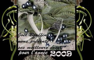 Voeux-2008-JB