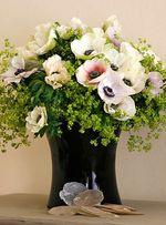 Anemone-vase
