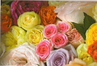 Rose-art_detail