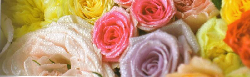 Rose-art_detail-2