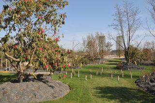 Le-vegetal-genereux-Terra-Botanica