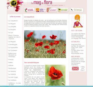 Pavot-interflora