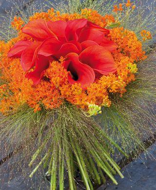 Fl-ete-orange_02