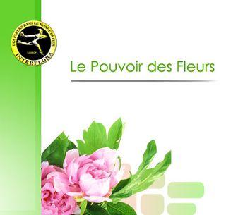 Pouvoir_fleurs