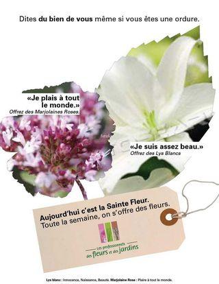 Sainte Fleur 2010-1_image2