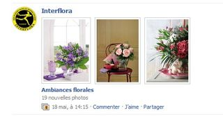 Facebook-interflora-4