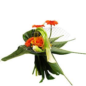 Interflora-Vannes