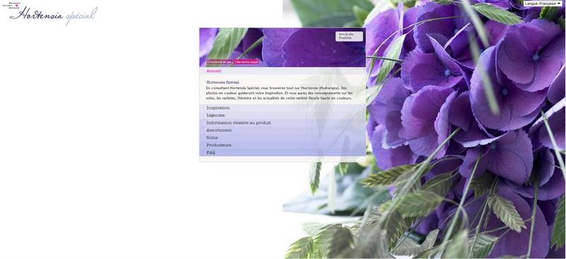 Hydrangea_site