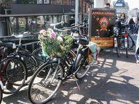 Fleurs-amsterdam_07