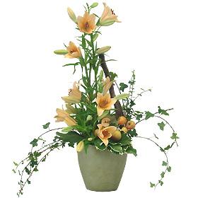 Interflora-mende
