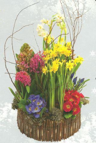 Interflora-hiver-3 001