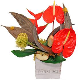Interflora-orleans_21888