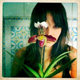Mon orchidée et moi