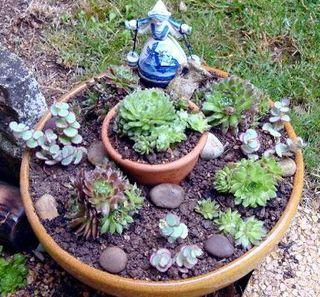 pourquoi je n 39 aime pas les plantes grasses le pouvoir des fleurs. Black Bedroom Furniture Sets. Home Design Ideas