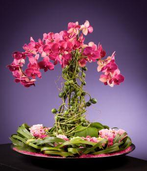 """Résultat de recherche d'images pour """"Journée de la femme fleurs"""""""
