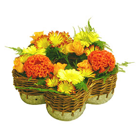 Interflora-orleans_marguerite