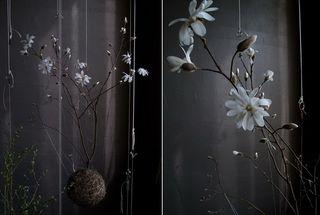 String-jardin_4