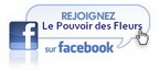 Lien vers ma page facebook
