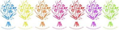 OHF frise fleurs