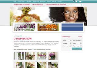 Orchidsinfos_02