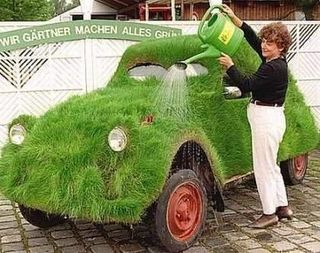 Nature-voiture
