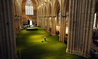 Cathedrale-herbe_03