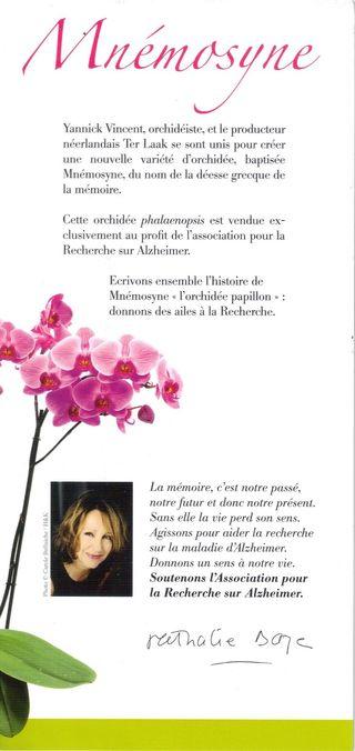 Offrez une orchidée pour la mémoire