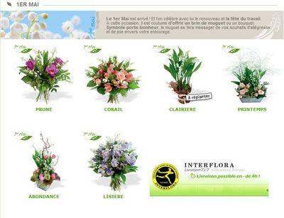 le pouvoir des fleurs interflora. Black Bedroom Furniture Sets. Home Design Ideas