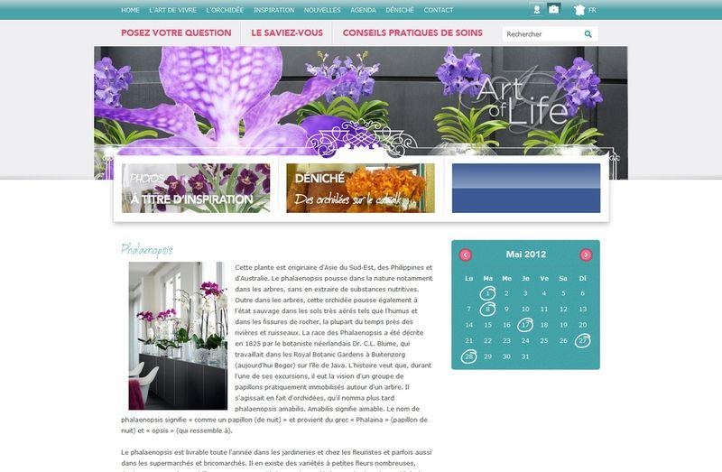 Orchidsinfos