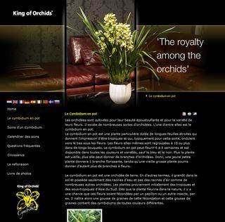 Orchidée-cymbidium_00