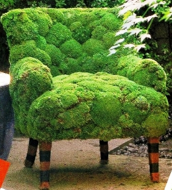 Nature-fauteuil