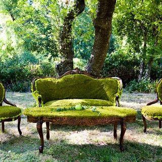 Nature-salon