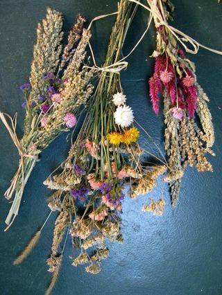 Fleurs-seches