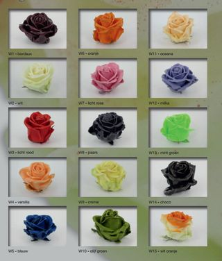 Roses_cirées 4