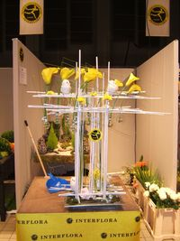 Interflora-Pierre Leray_02