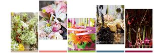 Interflora-carnet-2013_couleurs