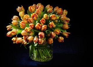 Tulipes des beaux bouquets le pouvoir des fleurs for Bouquet de tulipes
