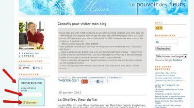Blog-newsletter