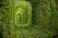 A-Tunnel of Love, Ukraine