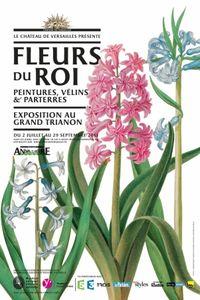 Versailles-FleursduRoi-affiche-HD