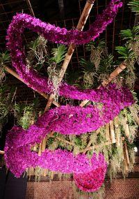 Un plafond avec des centaines de fleurons d'Orchidées Vanda