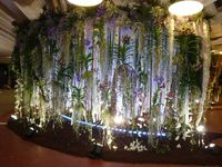 Floralies-2-2013_14