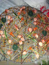 Floralies-1-2013_18