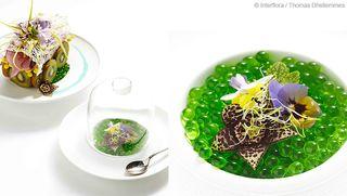 Interflora-soupe-japonaise