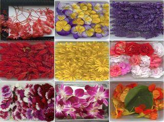 Fleurs comestibles lejardinde rungis