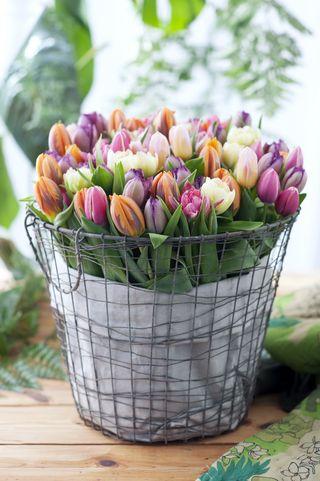 Tulipes-vase