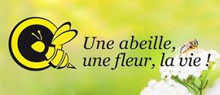 Interflora-dotation-logo