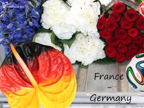 CM2014-France-Allemagne