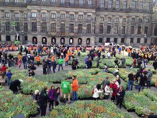 Journée tulipes