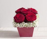 Interflora-St_Valentin-My_Valentine